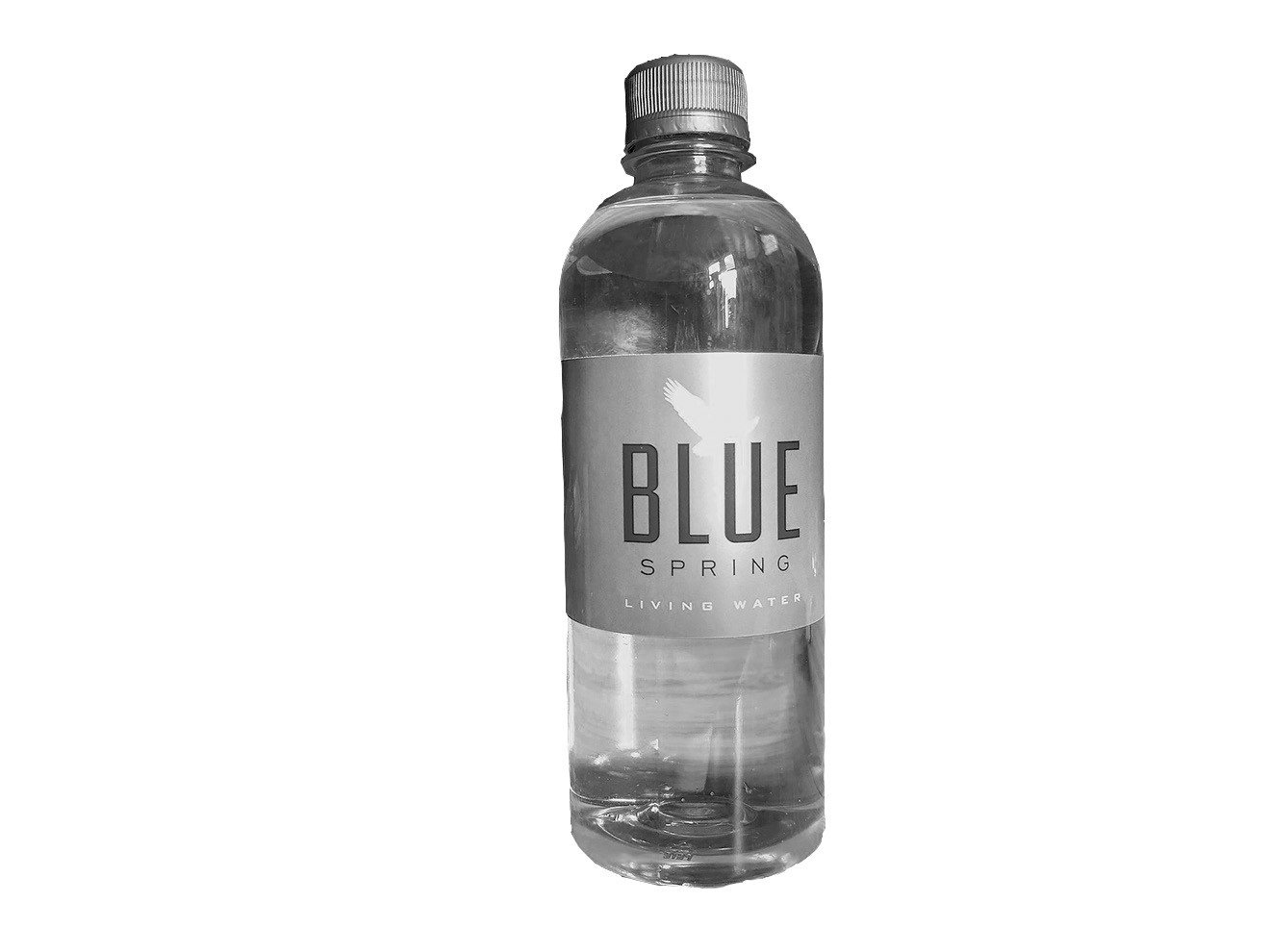 blue spring water revivified