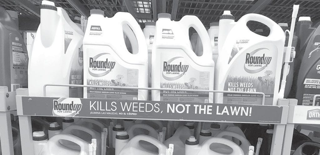 If you are going to use pesticides, herbicides, insecticides, or fungicides in or around your home, read the label first.