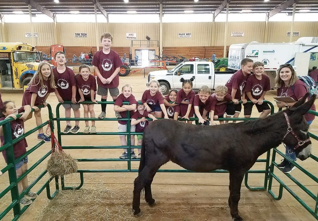 Ms. McHan's Southeastern second-graders learn about Paris the donkey who resides at Bullard Farm in Blountsville.