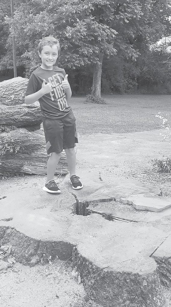 Evan Gargus, Sue Tidwell's grandson, stands on the stump of the large oak tree that had to be brought down.