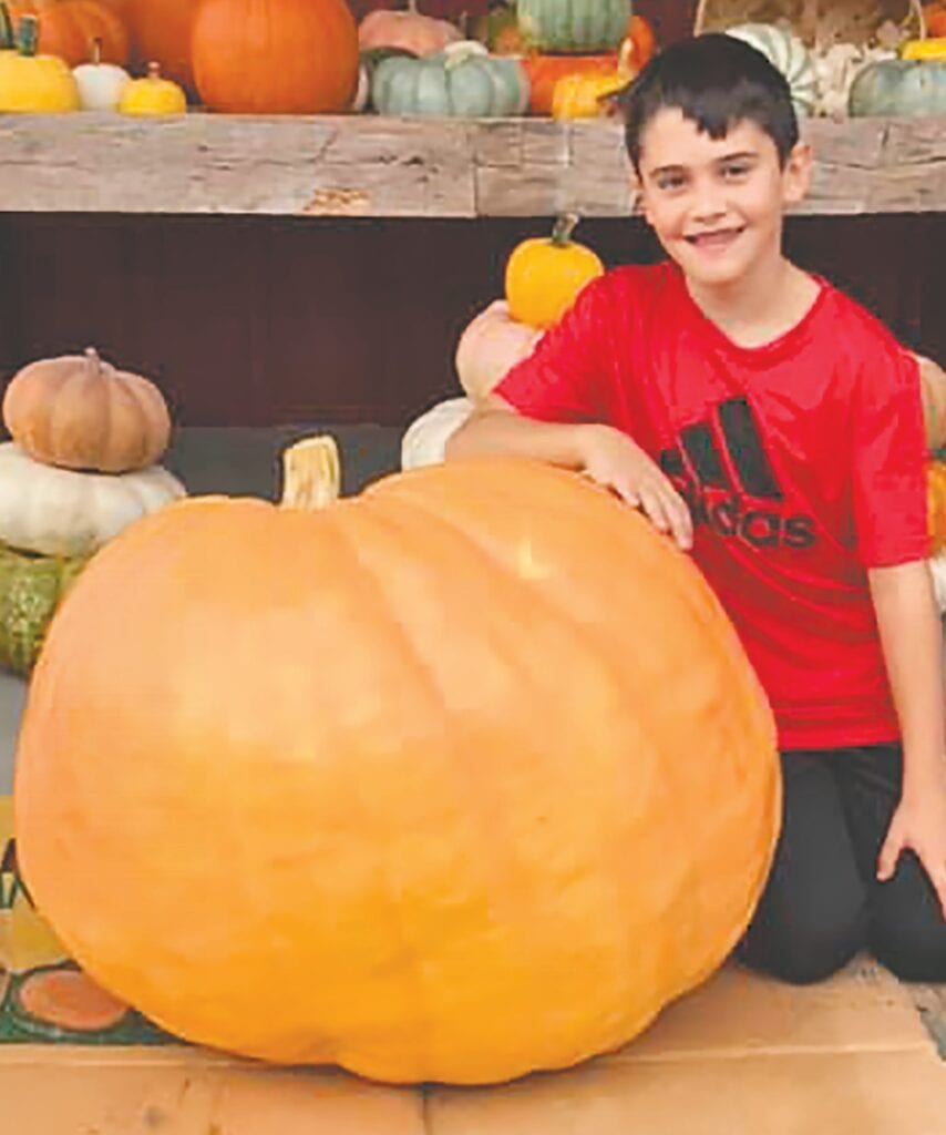 Carson McCoy, 9, and the giant pumpkin harvested at J. Calvert Farms in Dodge City. -Whited Farm Produce | Facebook